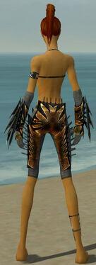 Assassin Elite Exotic Armor F gray arms legs back.jpg
