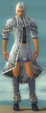 Elementalist Elite Iceforged Armor M gray chest feet front.jpg