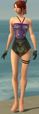 Mesmer Vabbian Armor F gray arms legs front.jpg
