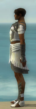 Paragon Ancient Armor M gray side.jpg