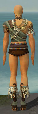 Ritualist Canthan Armor M gray chest feet back.jpg