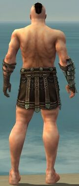 Warrior Elite Gladiator Armor M gray arms legs back.jpg