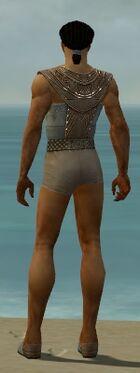 Dervish Vabbian Armor M gray chest feet back.jpg