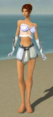 Elementalist Ascalon Armor F gray arms legs front.jpg