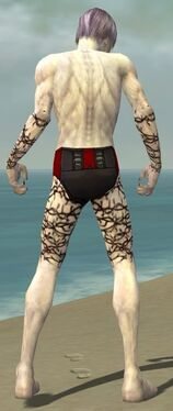 Necromancer Elite Scar Pattern Armor M gray arms legs back.jpg