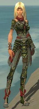 Ranger Elite Luxon Armor F gray front.jpg
