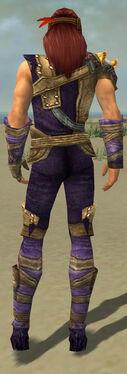 Ranger Tyrian Armor M dyed back.jpg