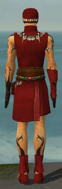 Ritualist Shing Jea Armor M dyed back.jpg