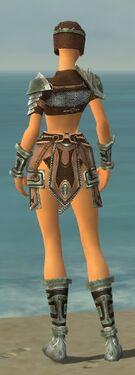 Warrior Gladiator Armor F gray back.jpg