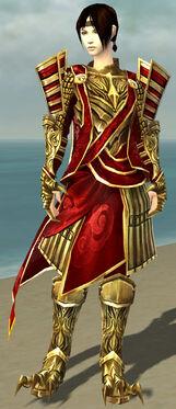 Dragonguard F body front.jpg