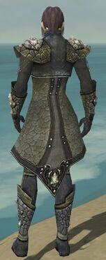 Elementalist Elite Stoneforged Armor M gray back.jpg