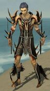 Necromancer Ancient Armor M gray front.jpg