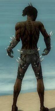 Necromancer Elite Canthan Armor M gray arms legs back.jpg