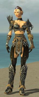 Warrior Silver Eagle Armor F nohelmet.jpg
