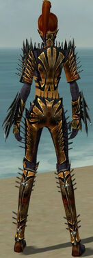 Assassin Elite Exotic Armor F dyed back.jpg