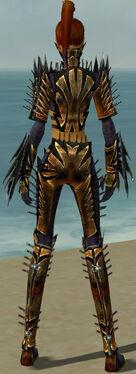 Assassin Elite Exotic Armor F dyed back.jpg