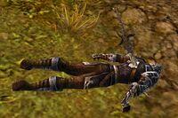 Fallen Vanguard Soldier.jpg