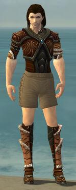 Ranger Vabbian Armor M gray chest feet front.jpg
