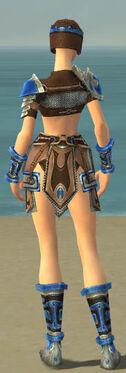 Warrior Gladiator Armor F dyed back.jpg
