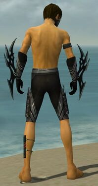 Assassin Vabbian Armor M gray arms legs back.jpg
