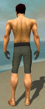 Mesmer Elite Enchanter Armor M gray arms legs back.jpg