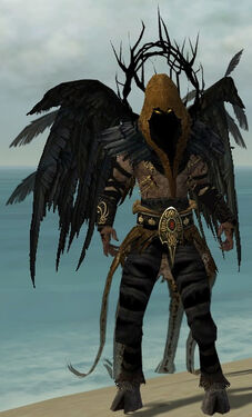 Raiment of the Lich M dyed front.jpg