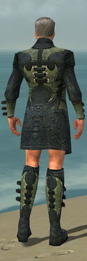 Mesmer Elite Kurzick Armor M gray chest feet back.jpg