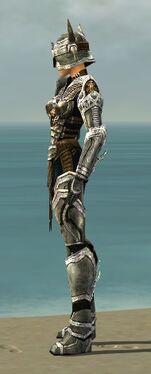 Warrior Elite Sunspear Armor F dyed side.jpg