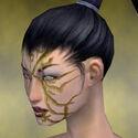 Necromancer Shing Jea Armor F dyed head left.jpg