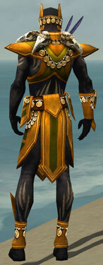 Ritualist Elite Kurzick Armor M dyed back.jpg