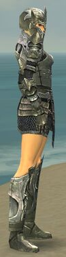 Warrior Elite Templar Armor F gray side.jpg