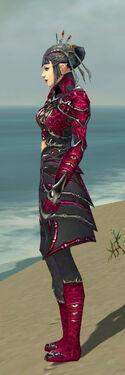 Necromancer Elite Necrotic Armor F dyed side.jpg