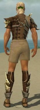 Ranger Asuran Armor M gray chest feet back.jpg