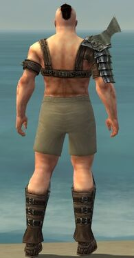 Warrior Elite Gladiator Armor M gray chest feet back.jpg