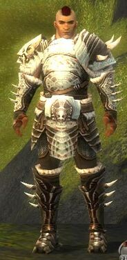 Warrior Norn Armor M nohelmet.jpg