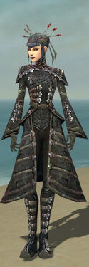 Necromancer Elite Cultist Armor F gray front.jpg