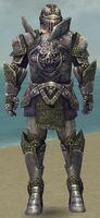 Warrior Platemail Armor M gray front.jpg