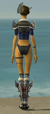 Assassin Norn Armor F gray chest feet back.jpg