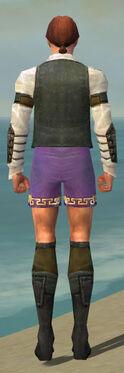 Mesmer Ascalon Armor M gray chest feet back.jpg