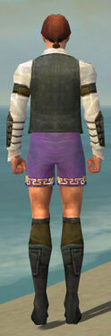 Mesmer Ascalon Armor M gray chest feet back.jpg