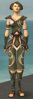 Monk Shing Jea Armor F gray front.jpg