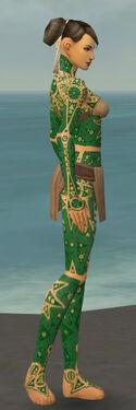 Monk Star Armor F dyed side.jpg