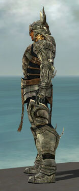 Warrior Elite Sunspear Armor M gray side.jpg