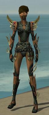 Assassin Elite Imperial Armor F dyed front.jpg