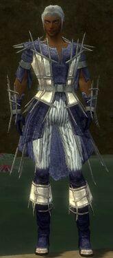 Elementalist Primeval Armor M dyed front.jpg