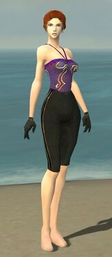 Mesmer Norn Armor F gray arms legs front.jpg