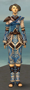 Monk Canthan Armor F dyed front.jpg