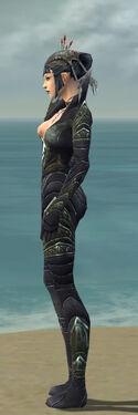 Necromancer Krytan Armor F gray side.jpg