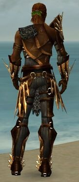 Ranger Elite Sunspear Armor M gray back.jpg