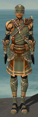 Ritualist Imperial Armor M gray front.jpg